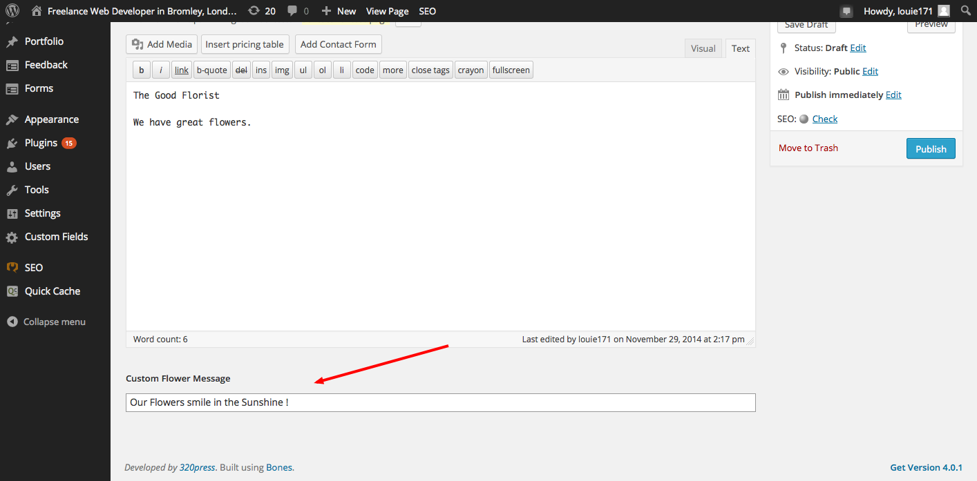 plugins Archives - Wordpress Web Development Agency in