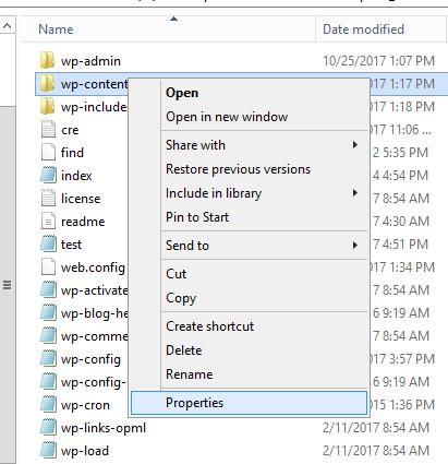 Wordpress on Windows IIS file permissions error